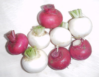 Turnips_-_mixed